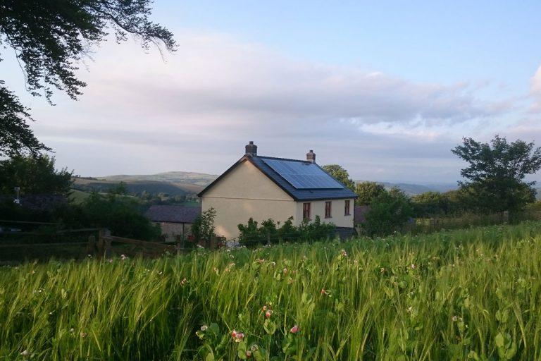 treberfedd farmhouse