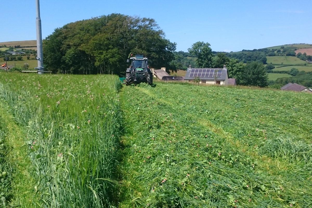 treberfedd farm tractor